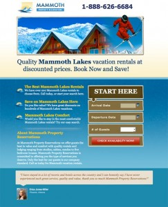 Best Website, UX and Mobile Design Guides and Tips of 2011 image mammoth lakes lp1 243x300