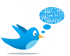 Why Twitter Needs to Change to Keep Up with Social Media Marketing image Twitter bird 300x238