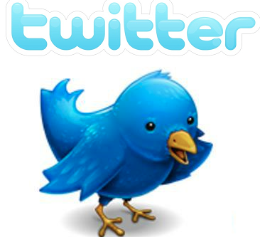 5 Twitter Tips When Asking Yourself: What To Tweet? image twitter bird