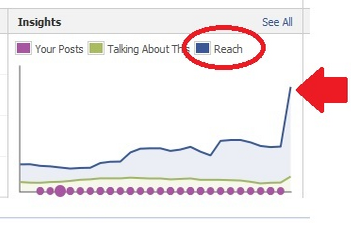 5 Ways To Amp Up Engagement On Your Facebook Page image facebook reach insights6