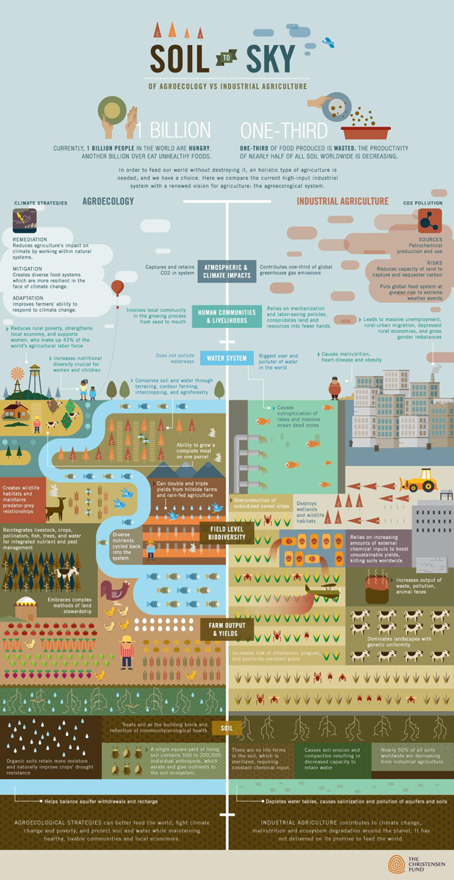 Feeding the World Sustainably: Agroecology vs. Industrial Agriculture image christensen fund feeding world sustainability business2 full