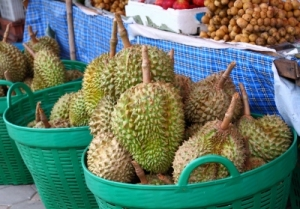 Stay away from touchy issues. By the way, introducing to you the king of all tropical fruits, the Durian