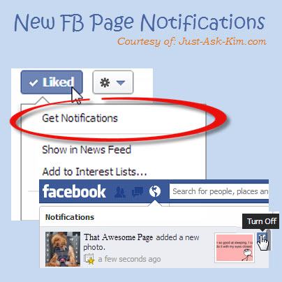 Facebook Fans Can Now Choose To Never Miss A Thing With Page Notifications! image Facebook Page Notifications