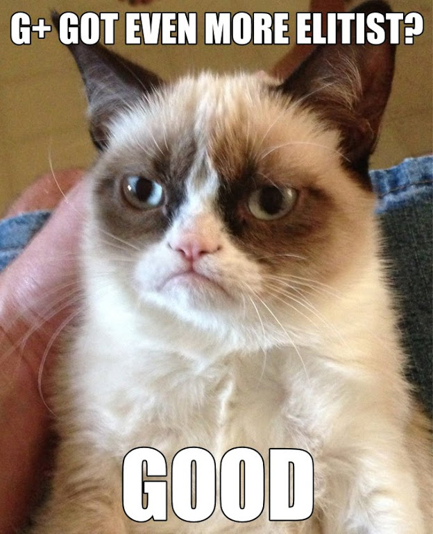 Google Plus Grumpy Cat Meme