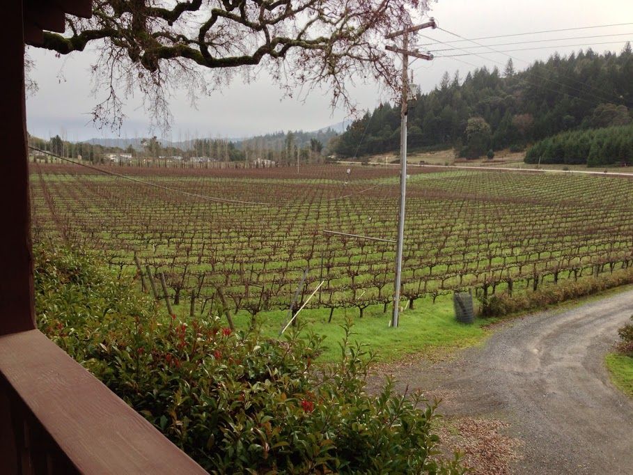 Wine Tasting Along the Anderson Valley Wine Trail – Part 1 image Yorkville cellar view