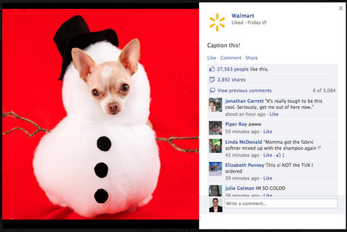 Best Practices: Posting (and Analyzing) Effective Facebook Content image snowmandog