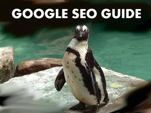 Google SEO Guide for small business