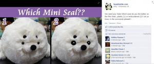 Why Its Important to Humanize Your Brand on Social Media image mini seal 300x126