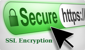 enterprise-ecommerce-site-security