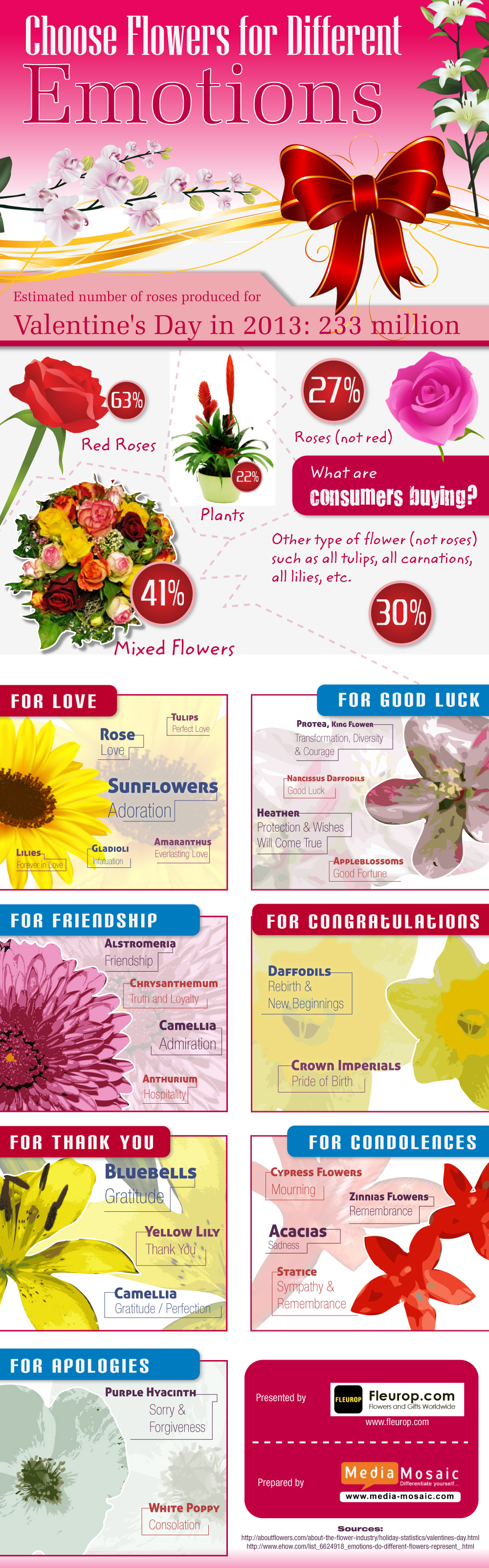 Expressing your Heart iest Emotions Through Flowers on Valentine's Day image Choose Flowers for Different Emotions