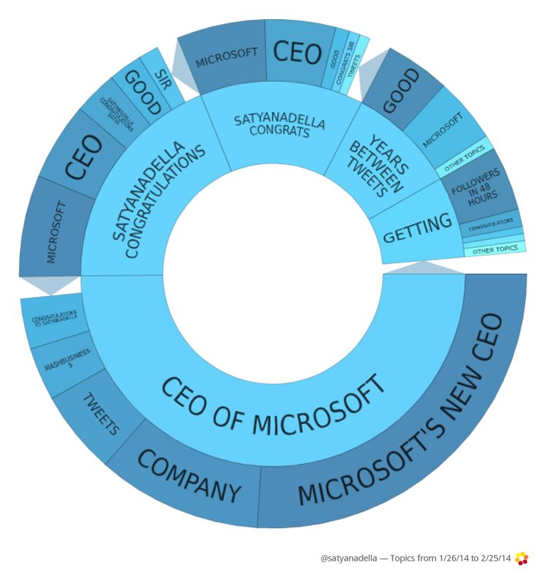 How CEO Influencers Impact Social Branding On Twitter image Satya Nadella Microsft Tech CEO Influencer Topic Wheel
