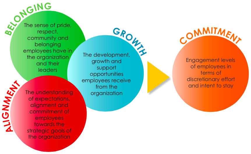 Hr Department Roles For Successful Employee Engagement