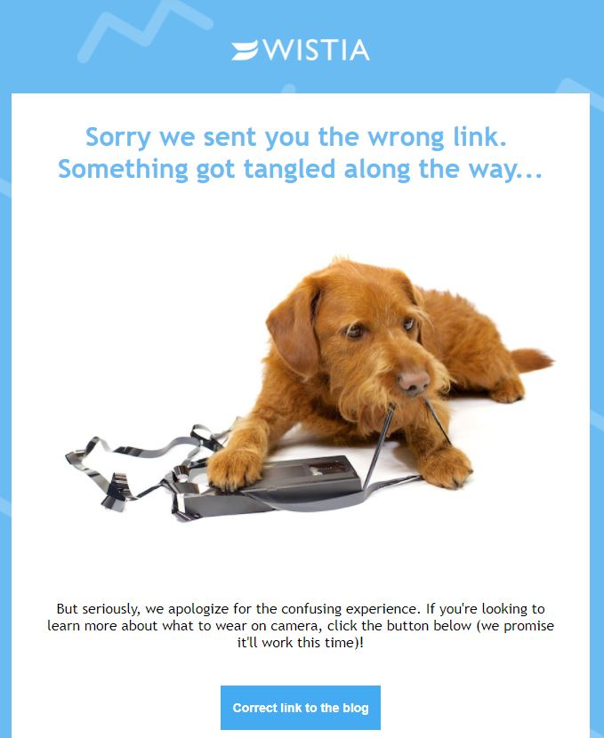 wistia-apology-with-humor