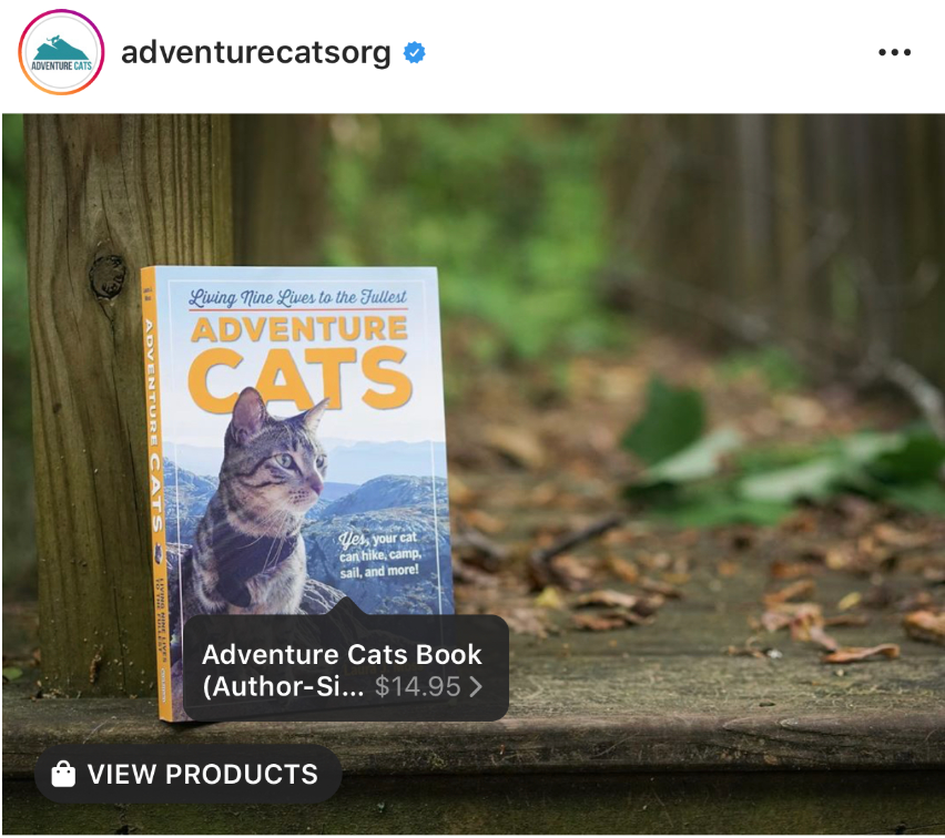 Adventure Cats book for sale on Instagram